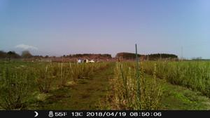 Imag0151