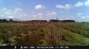 Imag0663